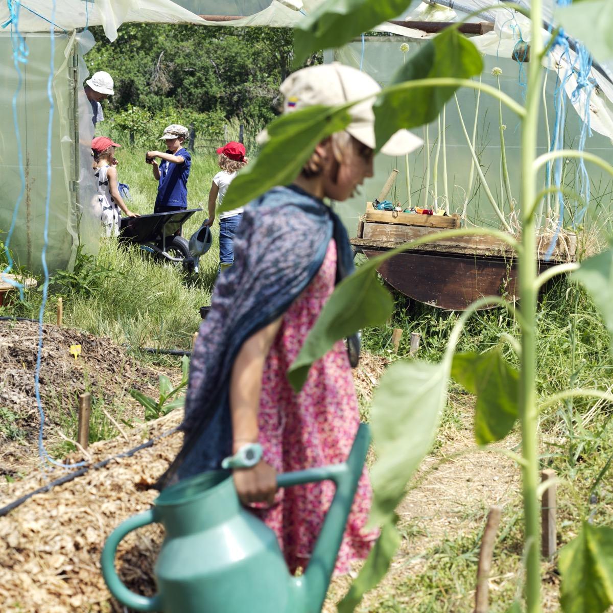 Jardinage dans la serre